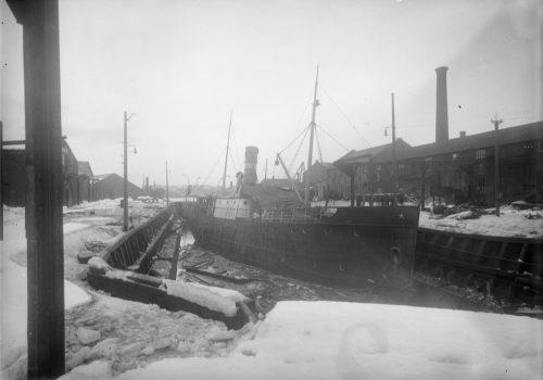 tmv-1929